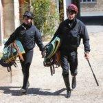 Campus de Gouvieux : formations cheval métiers des courses hippiques