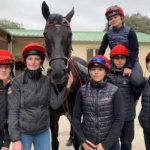 Formations cheval avec l'École des Courses Hippiques AFASEC