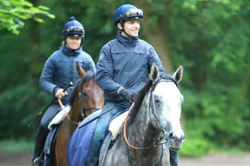 CAPA LAD CAVALIER D'ENTRAINEMENT - Formations cheval en apprentissage AFASEC